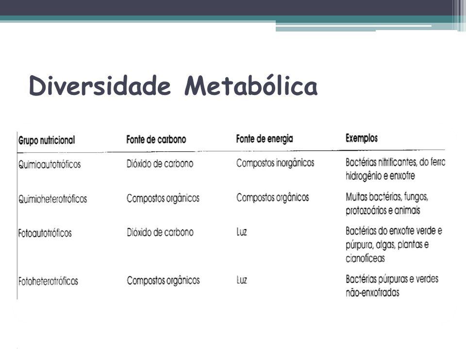 Diversidade Metabólica