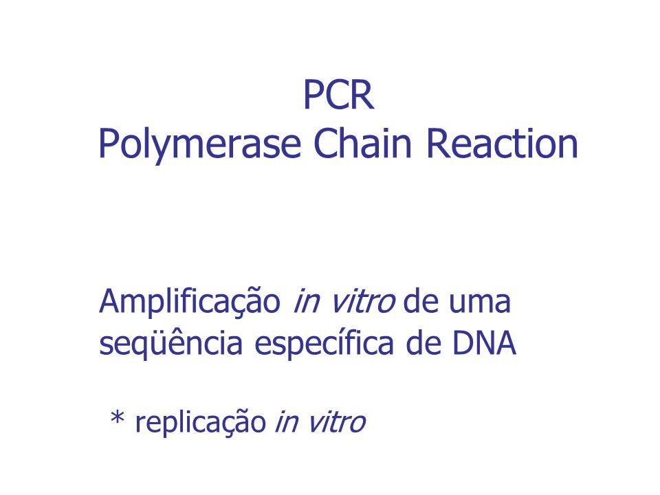 DELINEAMENTO DE PRIMERS Os iniciadores (oligos / primers) são a chave do sucesso ou da falha de um experimento com PCR.