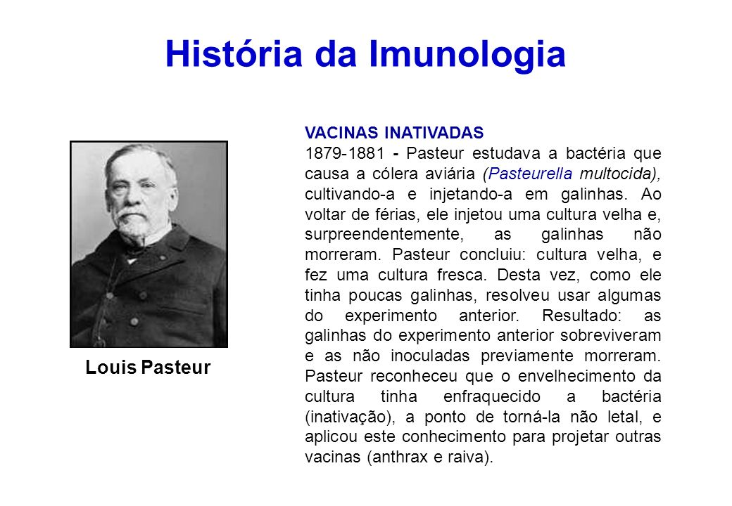 História da Imunologia VACINAS INATIVADAS 1879-1881 - Pasteur estudava a bactéria que causa a cólera aviária (Pasteurella multocida), cultivando-a e i