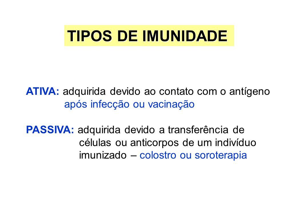 ATIVA: adquirida devido ao contato com o antígeno após infecção ou vacinação PASSIVA: adquirida devido a transferência de células ou anticorpos de um