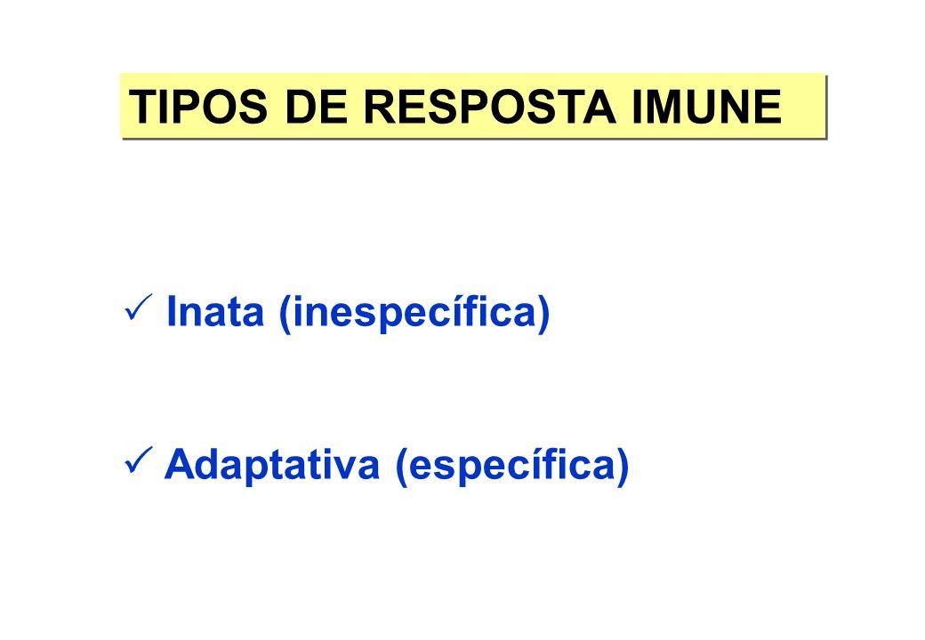 TIPOS DE RESPOSTA IMUNE Inata (inespecífica) Adaptativa (específica)