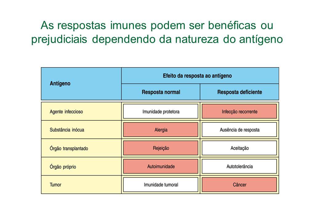 As respostas imunes podem ser benéficas ou prejudiciais dependendo da natureza do antígeno