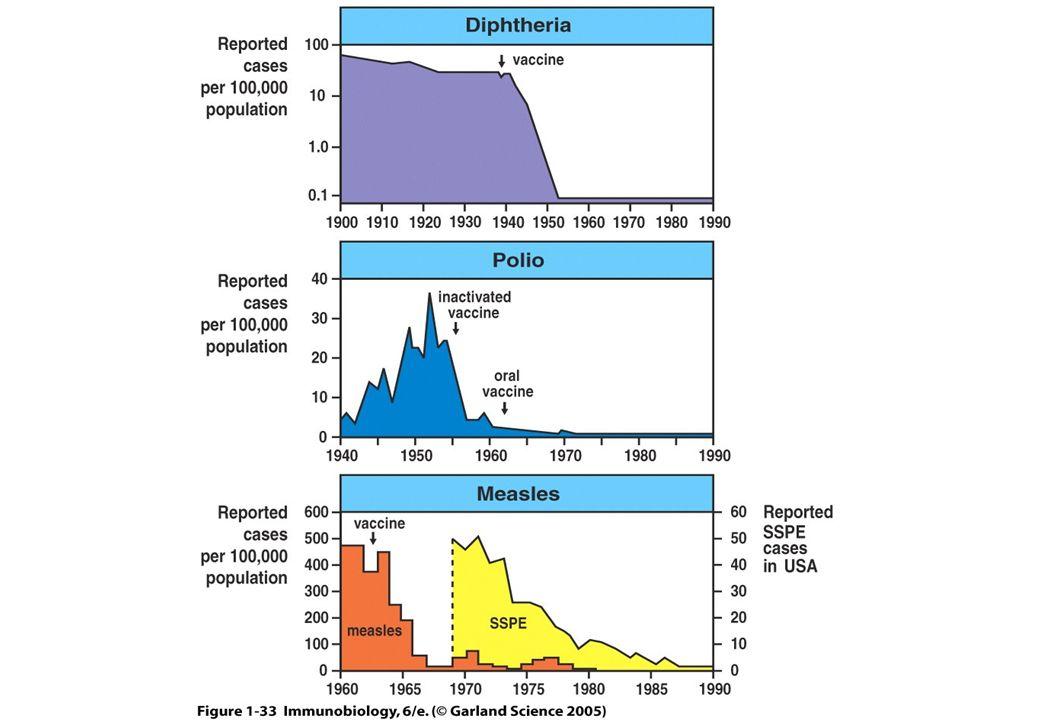 História da Imunologia VACINAS INATIVADAS 1879-1881 - Pasteur estudava a bactéria que causa a cólera aviária (Pasteurella multocida), cultivando-a e injetando-a em galinhas.