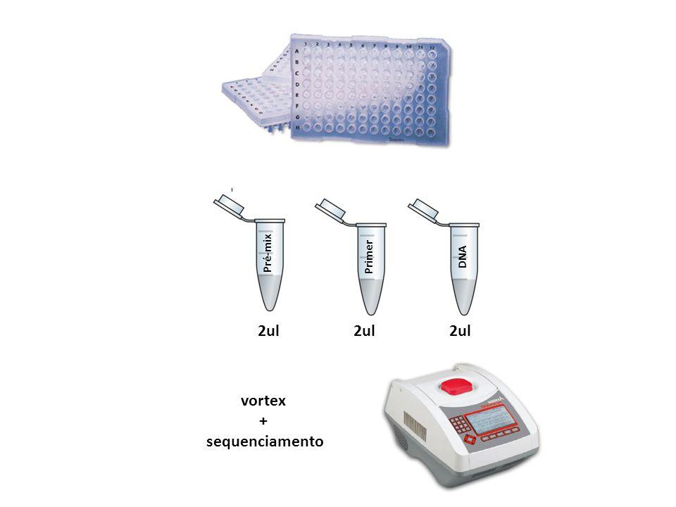Pré-mix PrimerDNA vortex + sequenciamento 2ul