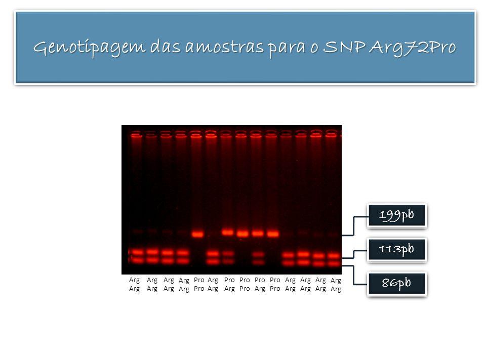 199pb199pb 113pb113pb 86pb86pb Arg Pro Arg Pro Arg Pro Arg Pro Arg Genotipagem das amostras para o SNP Arg72Pro