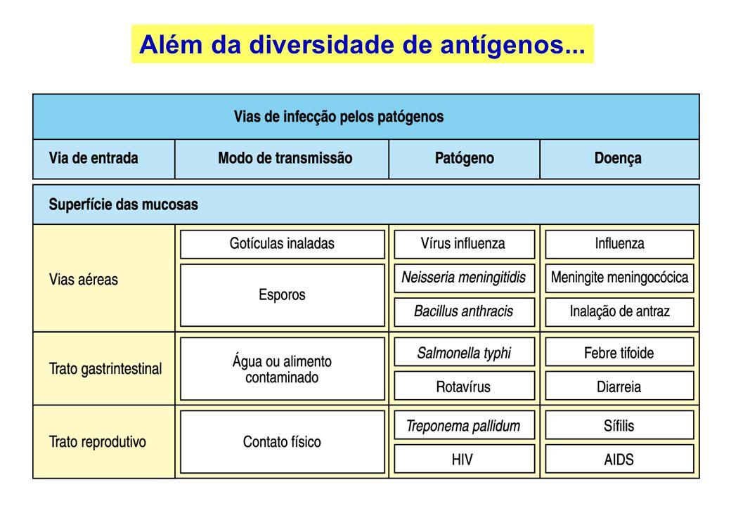 Além da diversidade de antígenos...