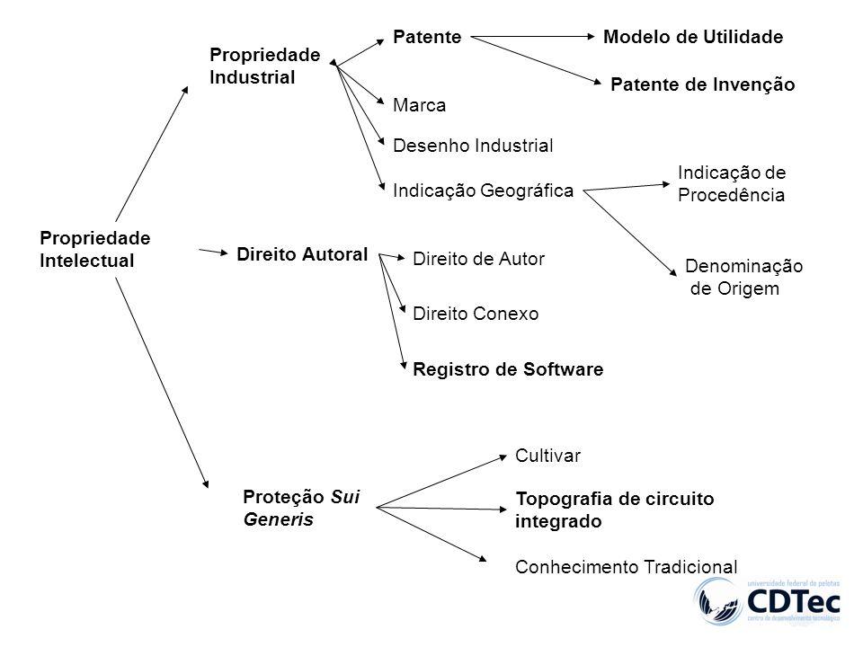 Propriedade Intelectual Propriedade Industrial Direito Autoral Proteção Sui Generis Patente Marca Desenho Industrial Indicação Geográfica Modelo de Ut