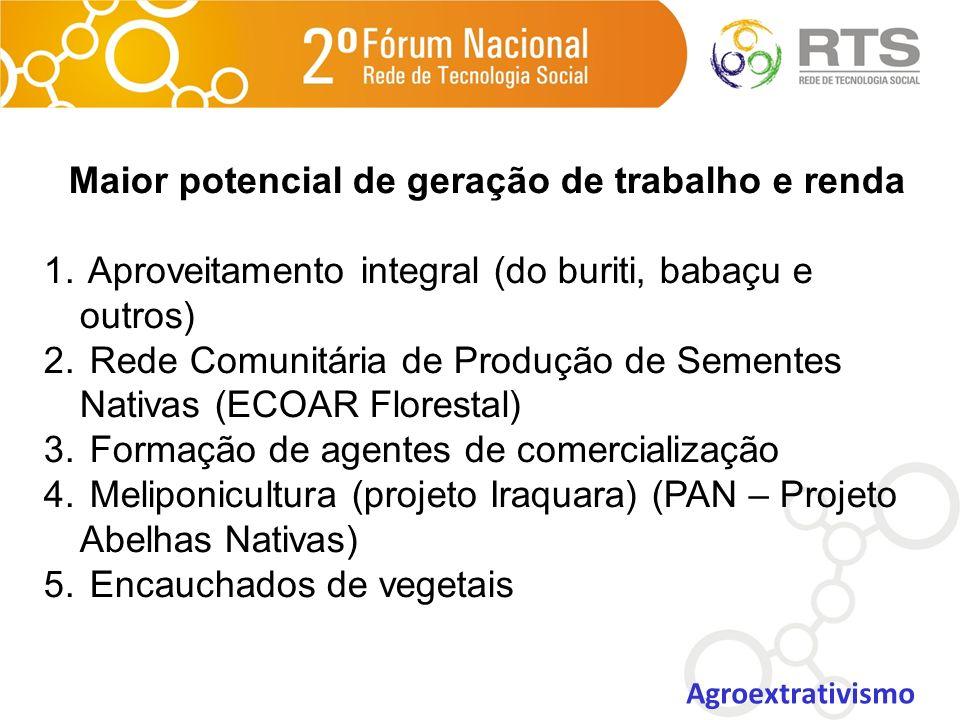 Maior potencial de geração de trabalho e renda 1. Aproveitamento integral (do buriti, babaçu e outros) 2. Rede Comunitária de Produção de Sementes Nat