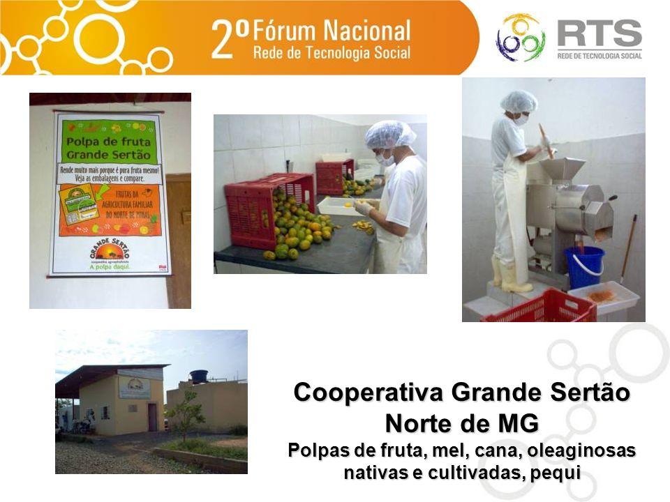 Cooperativa Grande Sertão Norte de MG Polpas de fruta, mel, cana, oleaginosas nativas e cultivadas, pequi