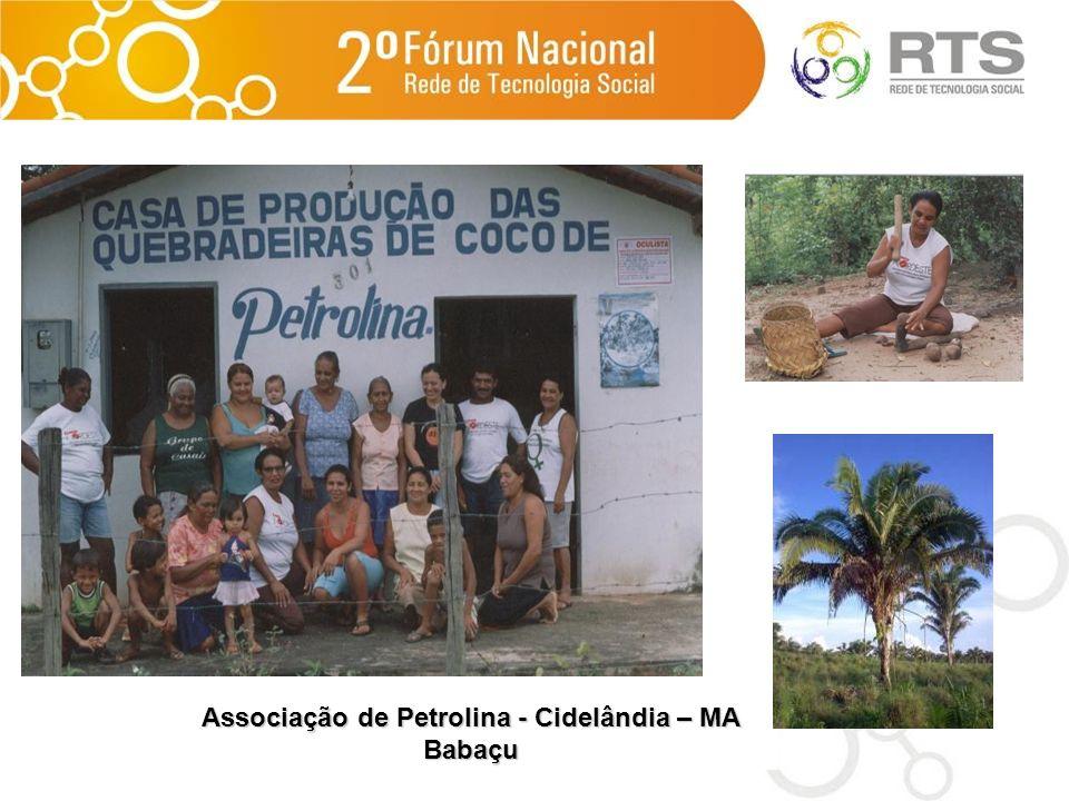 Associação de Petrolina - Cidelândia – MA Babaçu