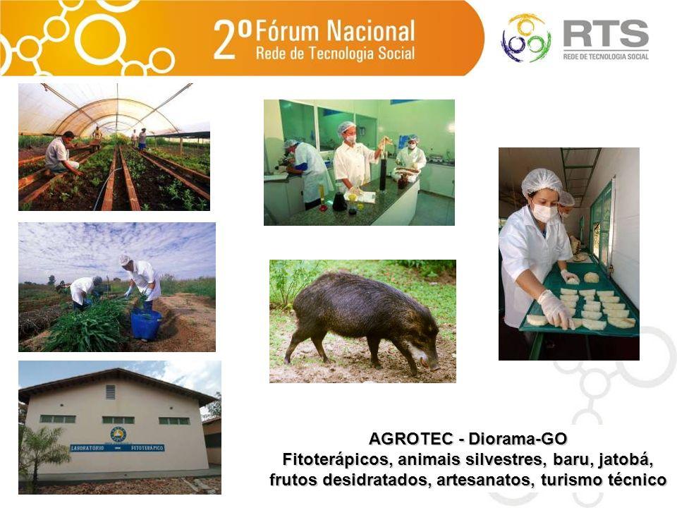 AGROTEC - Diorama-GO Fitoterápicos, animais silvestres, baru, jatobá, frutos desidratados, artesanatos, turismo técnico