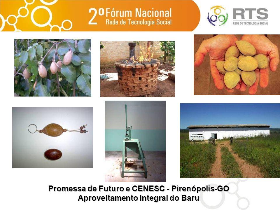 Promessa de Futuro e CENESC - Pirenópolis-GO Aproveitamento Integral do Baru