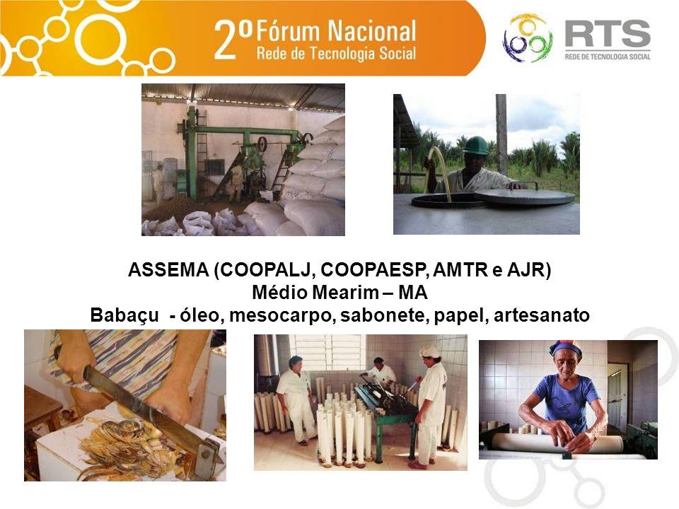 ASSEMA (COOPALJ, COOPAESP, AMTR e AJR) Médio Mearim – MA Babaçu - óleo, mesocarpo, sabonete, papel, artesanato