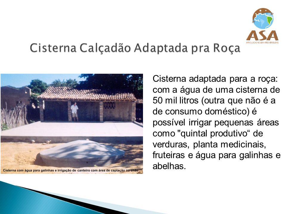 Cisterna adaptada para a roça: com a água de uma cisterna de 50 mil litros (outra que não é a de consumo doméstico) é possível irrigar pequenas áreas