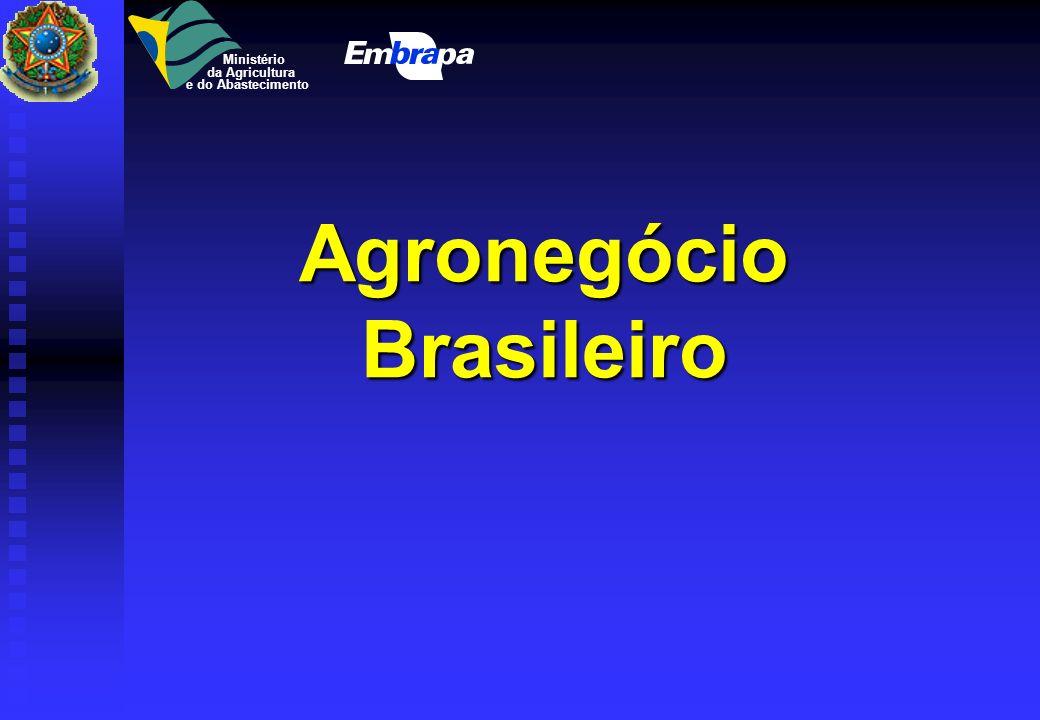 Energia e Modernização da Agricultura Elias de Freitas Júnior Diretoria Executiva Diretoria ExecutivaAssessor Palestra apresentada no I Seminário Ener