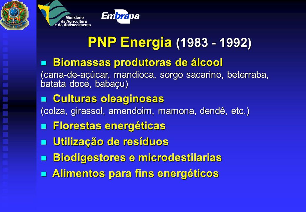 Recursos naturais Recursos genéticos Biotecnologia Produção de grãos Frutas e hortaliças Produção animal Matérias primas Produção florestal Agricultur