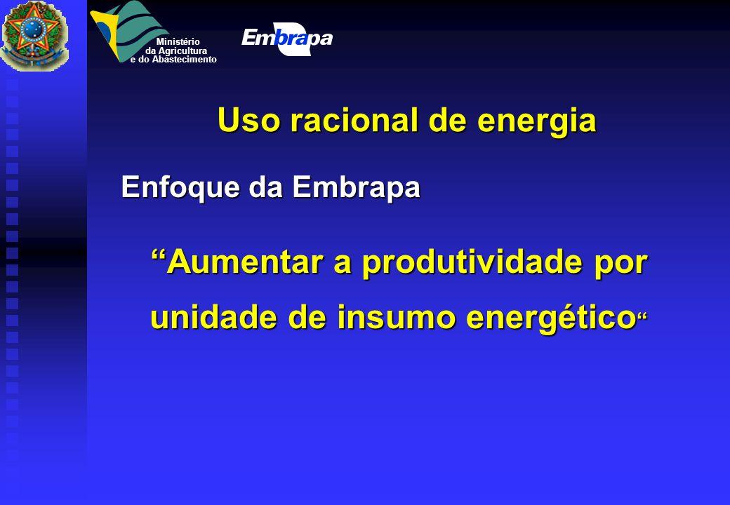 PNP Energia (1983 - 1992) Biomassas produtoras de álcool Biomassas produtoras de álcool (cana-de-açúcar, mandioca, sorgo sacarino, beterraba, batata d