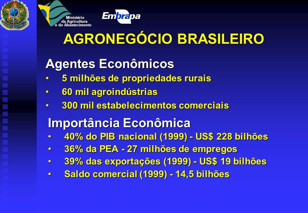 Agronegócio Brasileiro Ministério da Agricultura e do Abastecimento