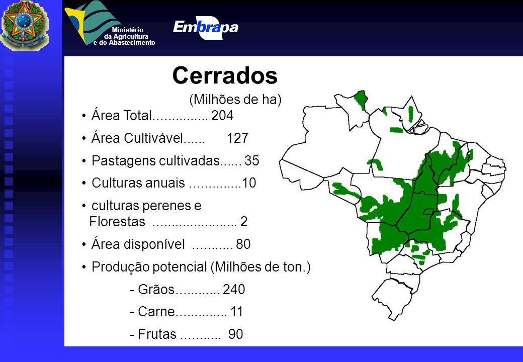 Ministério da Agricultura e do Abastecimento Semi Árido AREA TOTAL :85 milhões de ha IRRIGAÇÃO (mil ha) - Irrigados................. 600 - Irrigados..