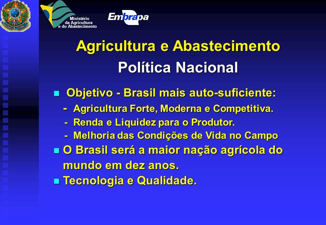 Ministério da Agricultura e do Abastecimento US$ bi Plano Real