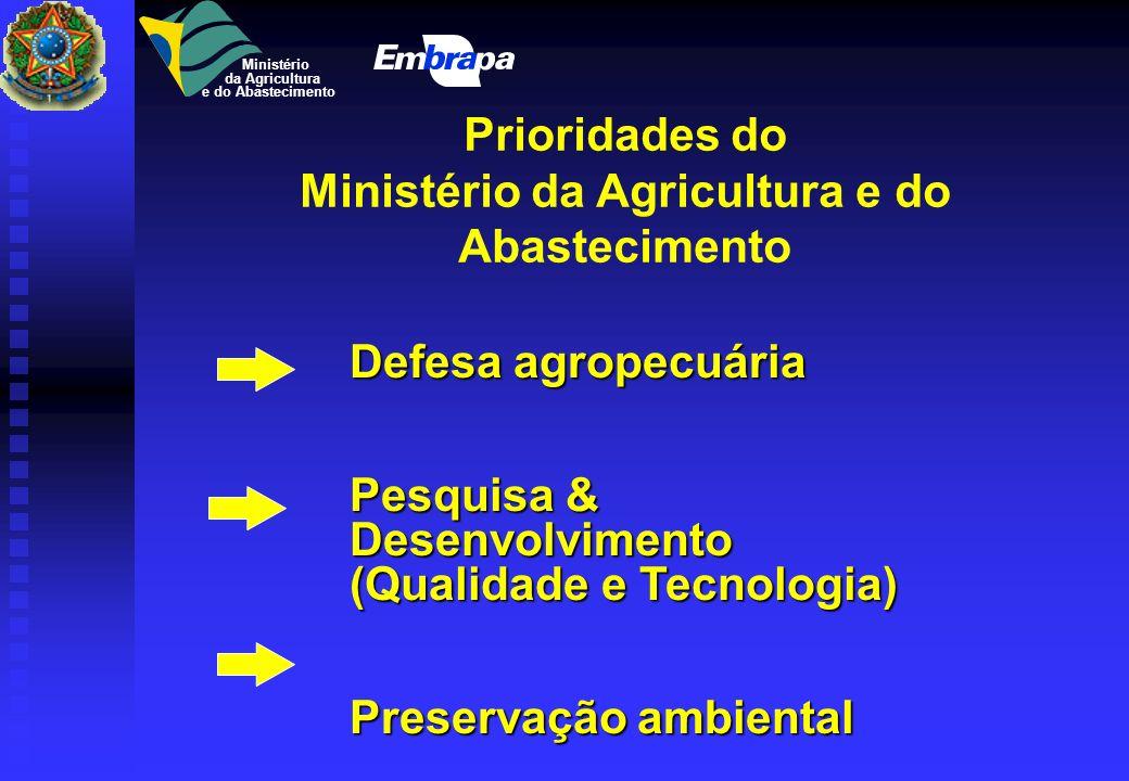 Agricultura e Abastecimento Política Nacional Objetivo - Brasil mais auto-suficiente: Objetivo - Brasil mais auto-suficiente: - Agricultura Forte, Mod