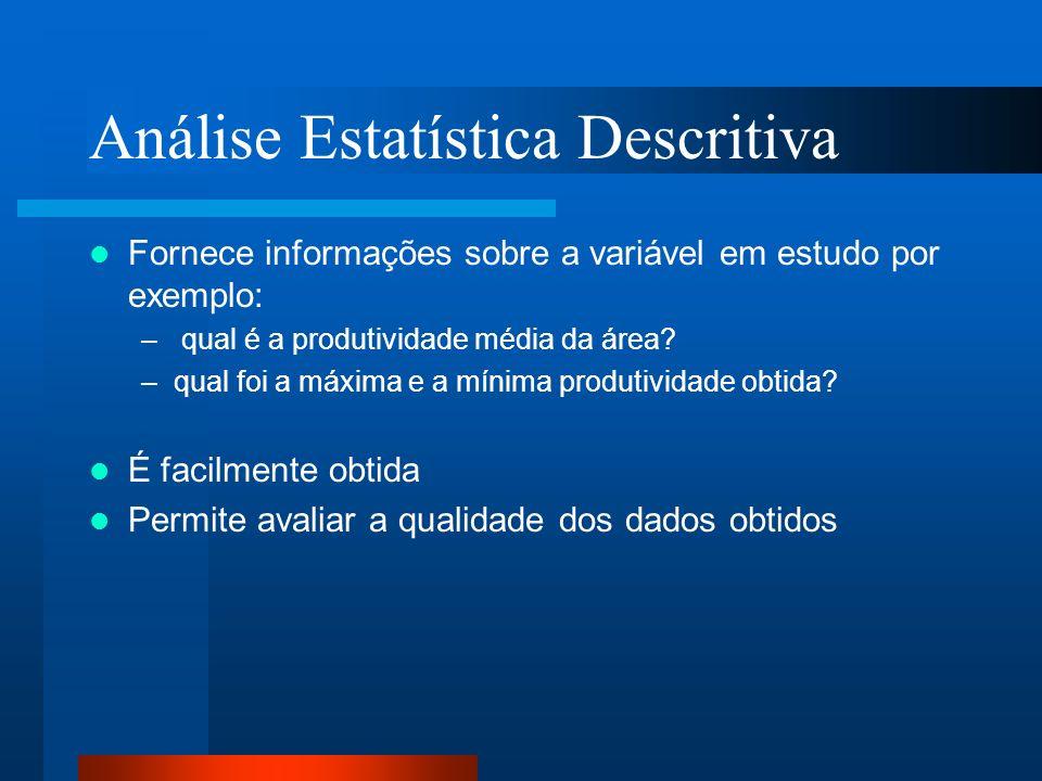 Análise Estatística Descritiva Fornece informações sobre a variável em estudo por exemplo: – qual é a produtividade média da área? –qual foi a máxima
