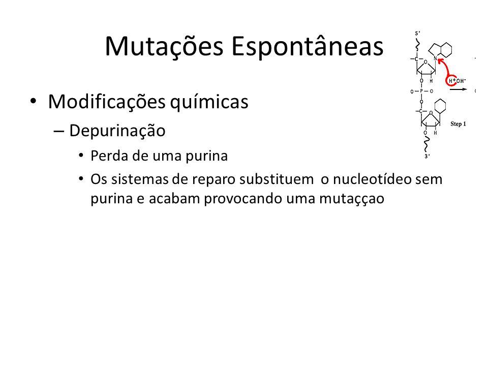 Mutações Espontâneas Modificações químicas – Depurinação Perda de uma purina Os sistemas de reparo substituem o nucleotídeo sem purina e acabam provoc