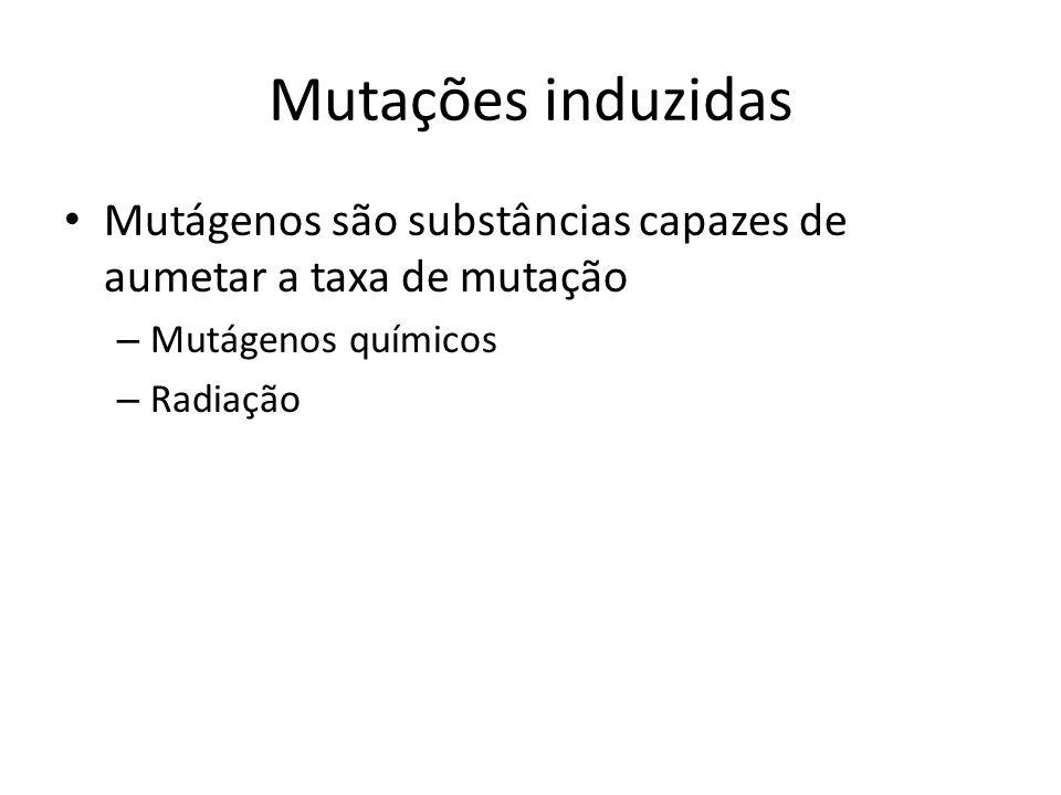 Mutações induzidas Mutágenos são substâncias capazes de aumetar a taxa de mutação – Mutágenos químicos – Radiação