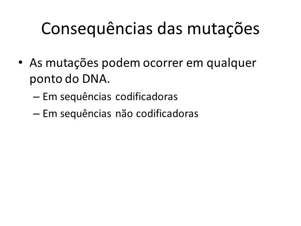 Consequências das mutações As mutações podem ocorrer em qualquer ponto do DNA. – Em sequências codificadoras – Em sequências não codificadoras