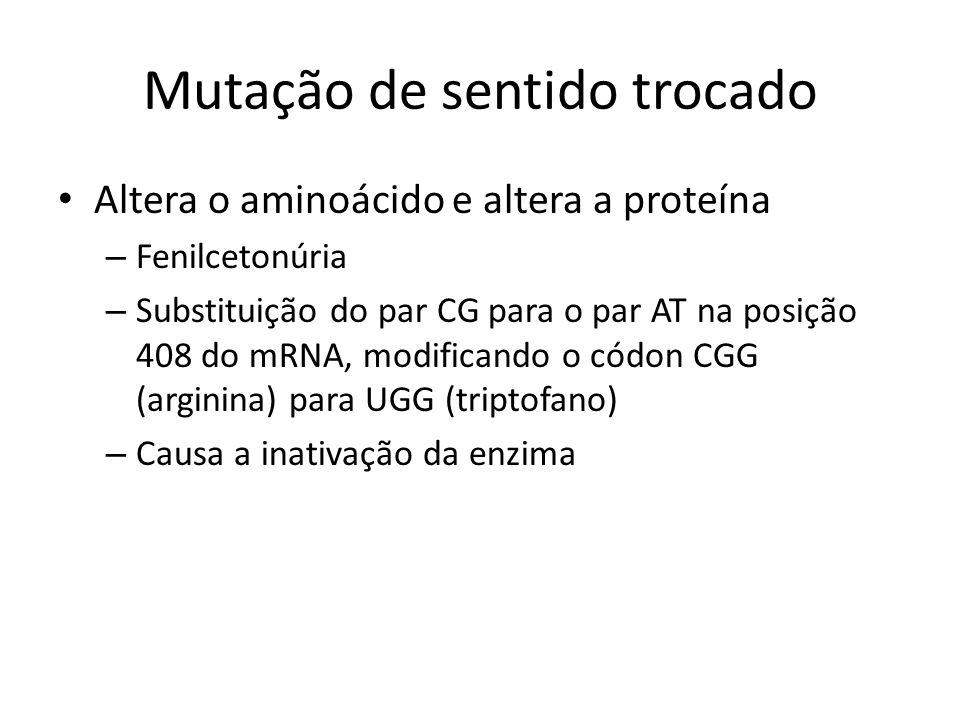 Mutação de sentido trocado Altera o aminoácido e altera a proteína – Fenilcetonúria – Substituição do par CG para o par AT na posição 408 do mRNA, mod