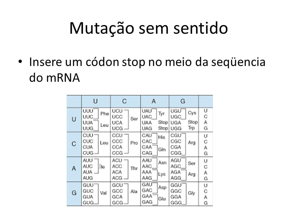 Mutação sem sentido Insere um códon stop no meio da seqüencia do mRNA