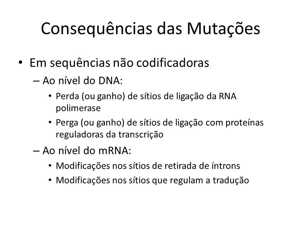 Consequências das Mutações Em sequências não codificadoras – Ao nível do DNA: Perda (ou ganho) de sítios de ligação da RNA polimerase Perga (ou ganho)