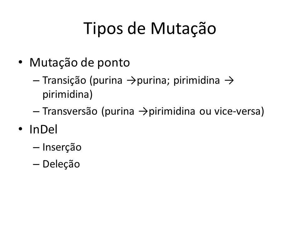 Tipos de Mutação Mutação de ponto – Transição (purina purina; pirimidina pirimidina) – Transversão (purina pirimidina ou vice-versa) InDel – Inserção