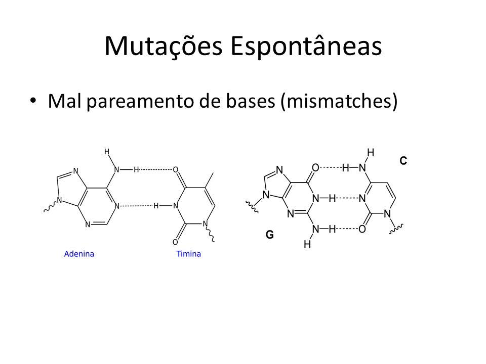 Mutações Espontâneas Mal pareamento de bases (mismatches)