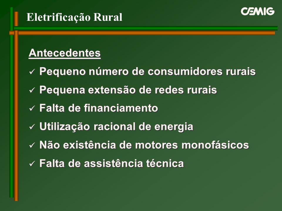 Eletrificação Rural Antecedentes Pequeno número de consumidores rurais Pequena extensão de redes rurais Falta de financiamento Utilização racional de
