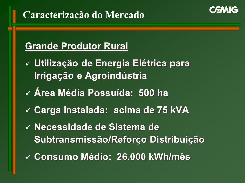 Caracterização do Mercado Grande Produtor Rural Utilização de Energia Elétrica para Irrigação e Agroindústria Área Média Possuída: 500 ha Carga Instal