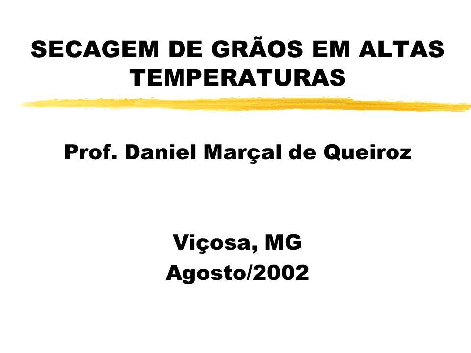 SECAGEM DE GRÃOS EM ALTAS TEMPERATURAS Prof. Daniel Marçal de Queiroz Viçosa, MG Agosto/2002