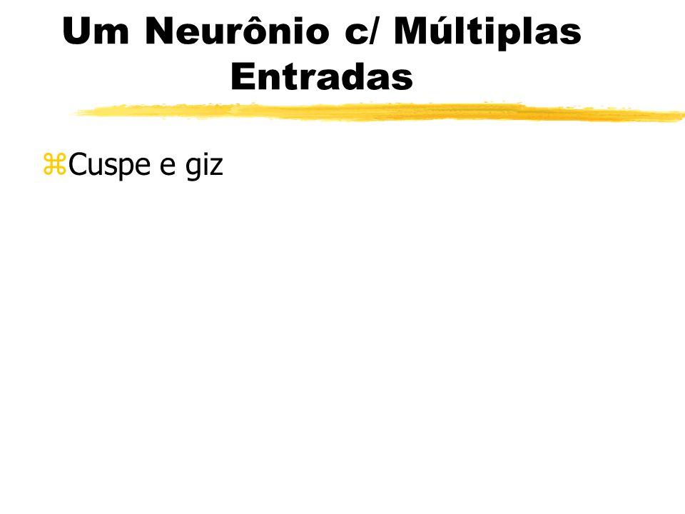 Um Neurônio c/ Múltiplas Entradas zCuspe e giz