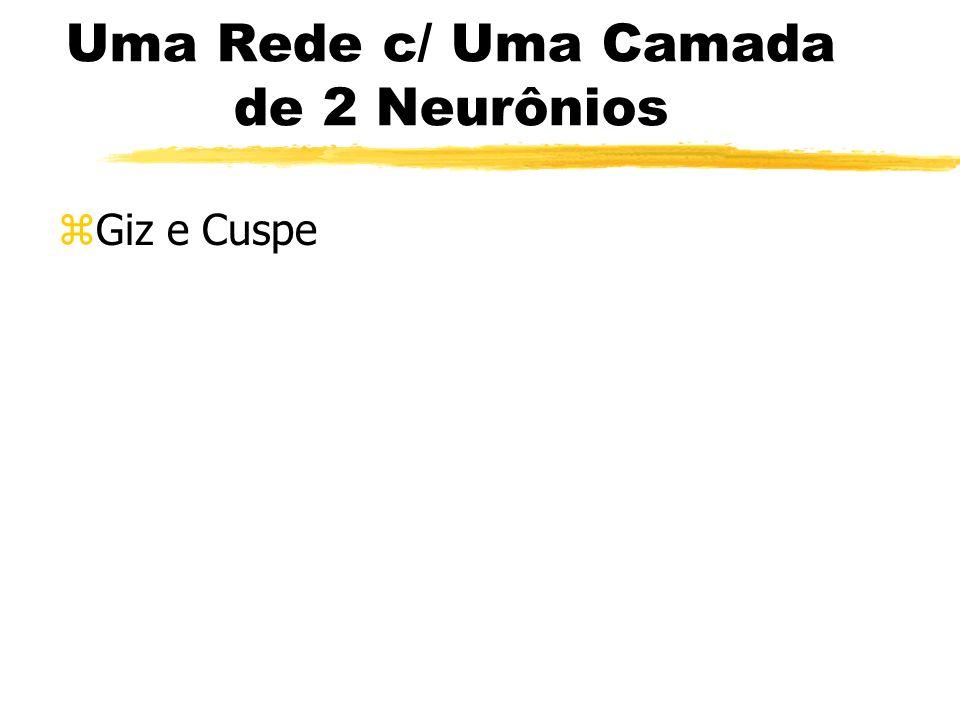 Uma Rede c/ Uma Camada de 2 Neurônios zGiz e Cuspe
