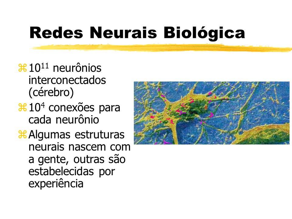 Redes Neurais Biológica zAs funções biológicas dos neurônios são armazenadas neles e nas conexões zAprender é um processo de estabelecimento de novas conexões ou modificações das existentes
