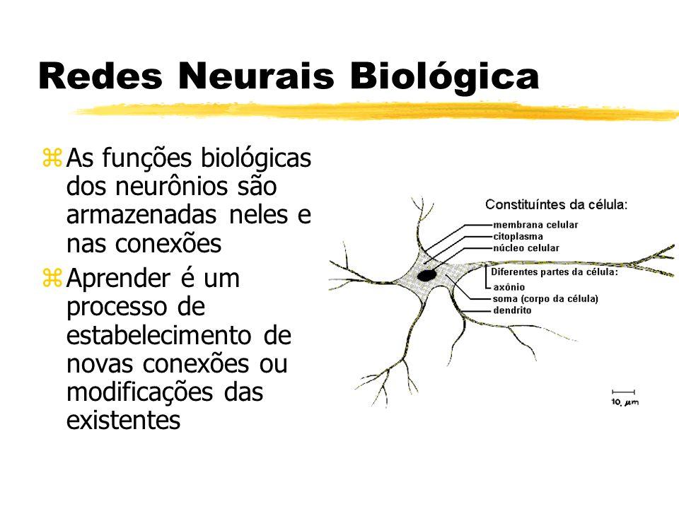 Redes Neurais Biológica zDendrito carrega o sinal elétrico para o núcleo da célula principal, que soma e limiariza todos os sinais e os enviam pelo axônio e dendritos provocando uma conexão (sinapse).