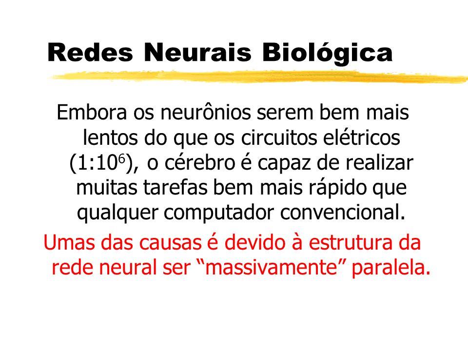 Redes Neurais Biológica Embora os neurônios serem bem mais lentos do que os circuitos elétricos (1:10 6 ), o cérebro é capaz de realizar muitas tarefa