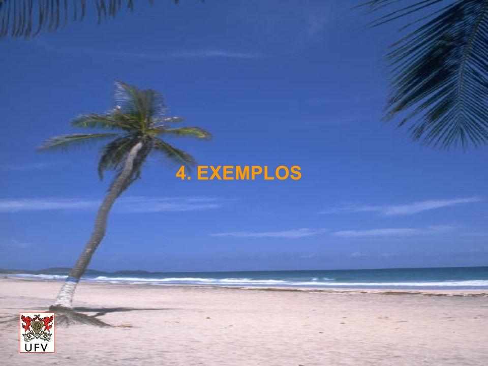 4. EXEMPLOS