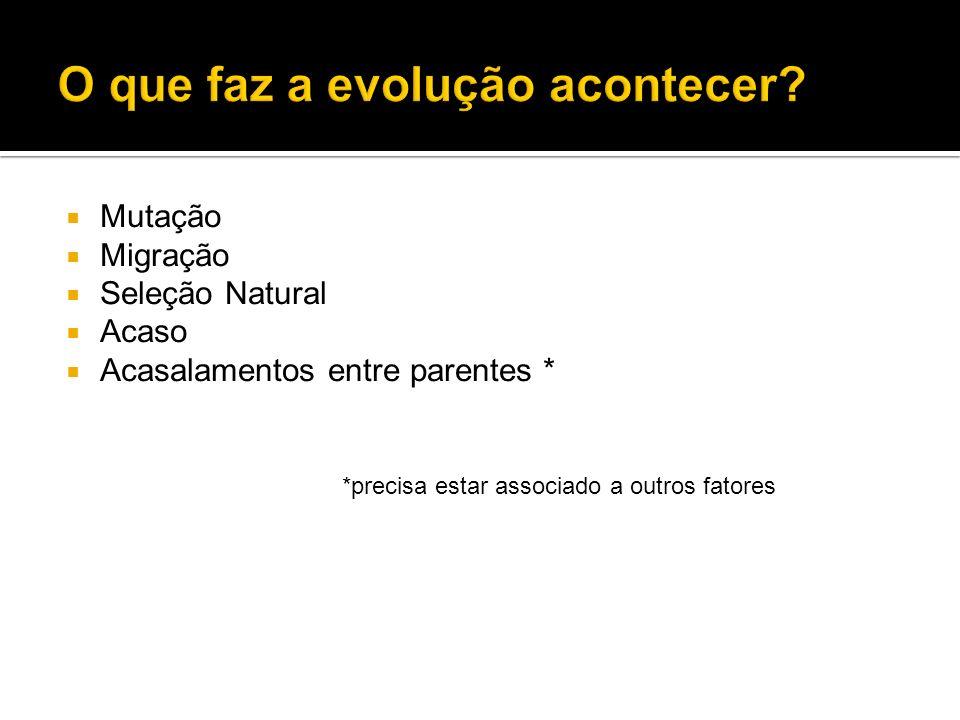 Mutação Migração Seleção Natural Acaso Acasalamentos entre parentes * *precisa estar associado a outros fatores