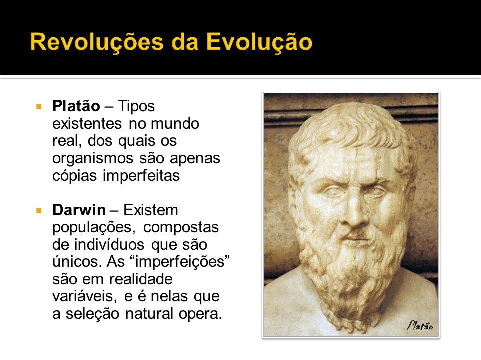 Platão – Tipos existentes no mundo real, dos quais os organismos são apenas cópias imperfeitas Darwin – Existem populações, compostas de indivíduos qu