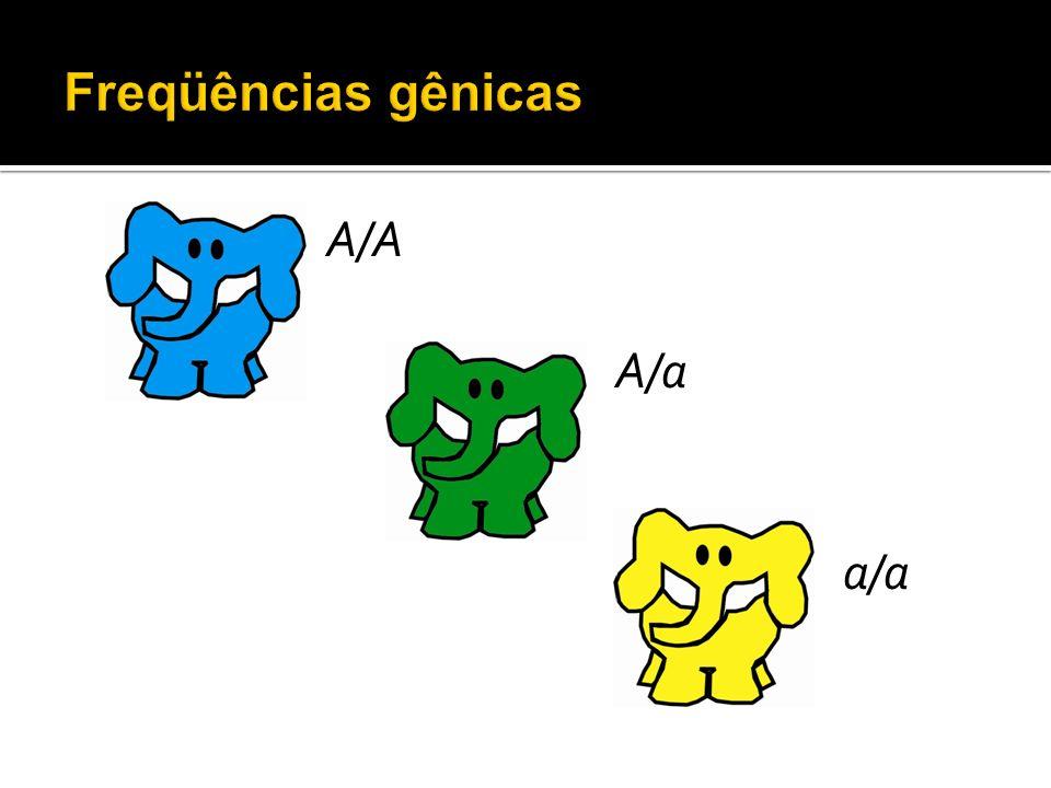 A/A A/a a/a