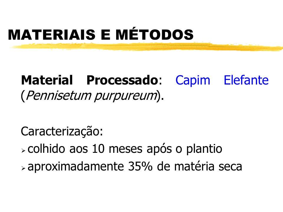 MATERIAIS E MÉTODOS Material Processado: Capim Elefante (Pennisetum purpureum).