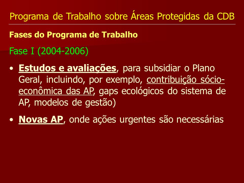Programa de Trabalho sobre Áreas Protegidas da CDB Fases do Programa de Trabalho Fase I (2004-2006) Estudos e avaliações, para subsidiar o Plano Geral