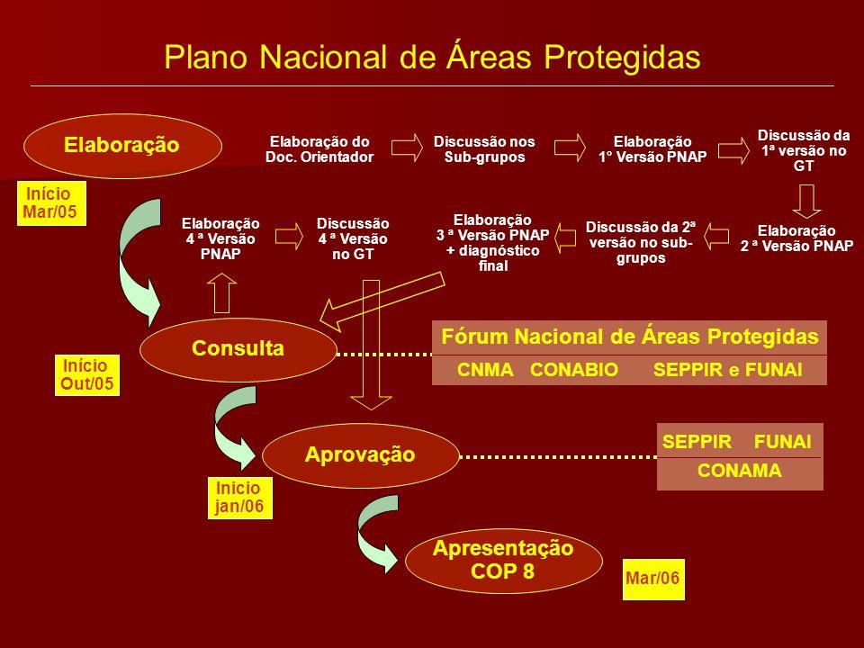 Plano Nacional de Áreas Protegidas Elaboração do Doc. Orientador Discussão nos Sub-grupos Elaboração 1° Versão PNAP Discussão da 1ª versão no GT Elabo