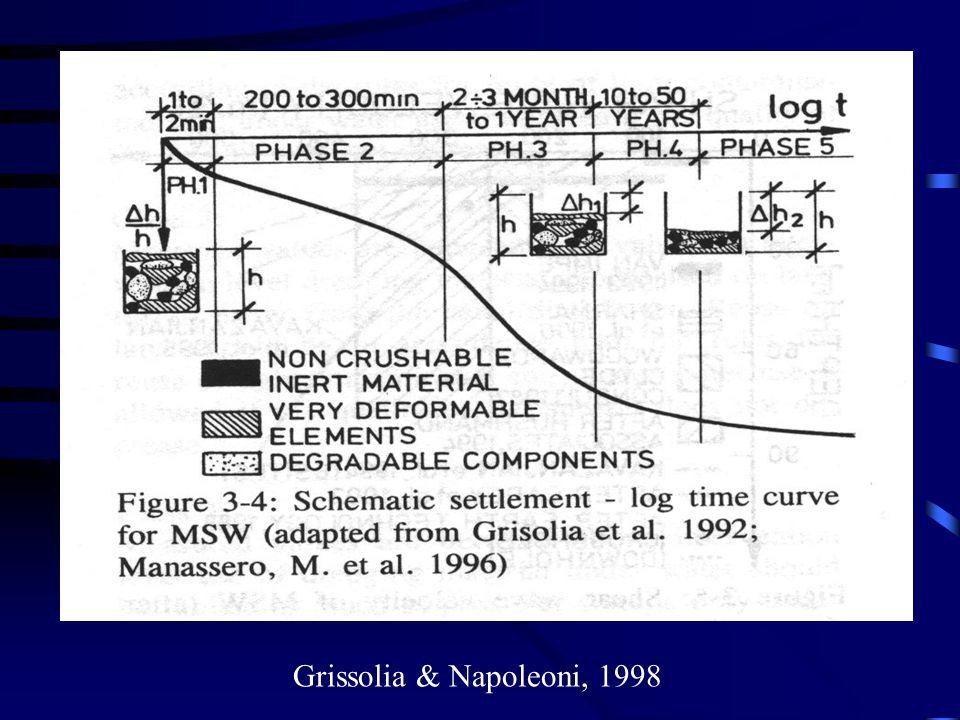 Grissolia & Napoleoni, 1998
